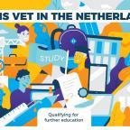 Afbeelding van Engelstalige infographic over het Nederlandse mbo
