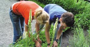 Afbeelding van AOC Raad, studenten groen onderwijs